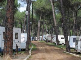 Sevilla_camping-camping-dehesa-nueva.jpg
