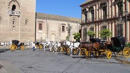 Sevilla_informatie-per-koets-paarden