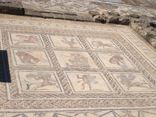Sevilla_italica-Mosaico_del_Domus_del_Planetario