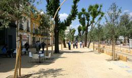 Sevilla_plein-alameda