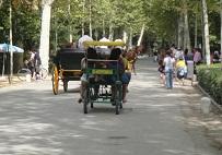 fietsen in het maria luisa park