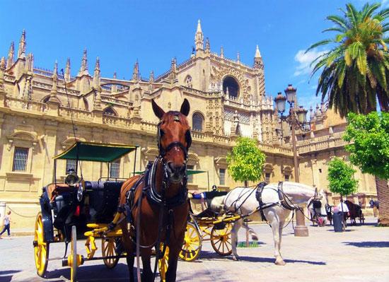 Sevilla_paarden-koetsen