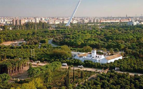 Sevilla_park-Parque-del-Alamillo-g.jpg