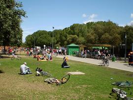 Sevilla_park-Parque-del-Alamillo-k.jpg