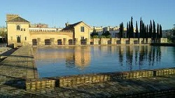 Sevilla_parken-parquebuhaira.JPG