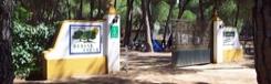 camping-dehesa-nueva
