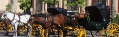 Sevilla per paardenkoets