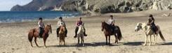 Paardrijden en Spaans leren in Andalusië